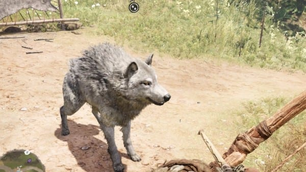 Far Cry Primal: How to Tame All Animals and What They Do