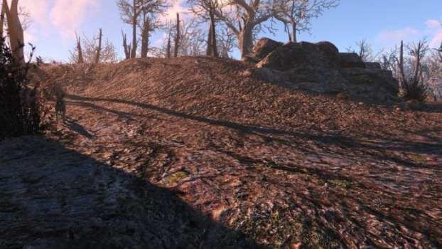 Vivid Fallout - Landscapes