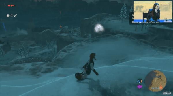 The Legend of Zelda, Breath of the Wild, shield snowboard