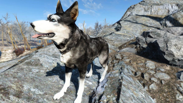 Top 50 Best Fallout 4 Xbox One Mods