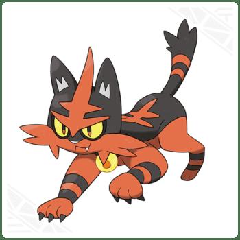 torracat