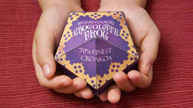 Chocolate Frog with a Wizard Card