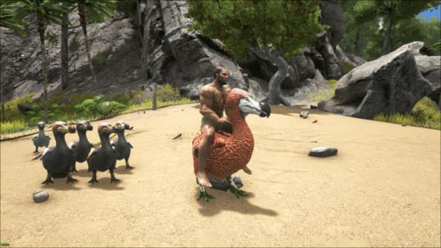 Rideable Dodos