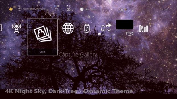 4K Night Sky, Dark Tree