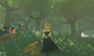 Bowsette, Breath of the Wild