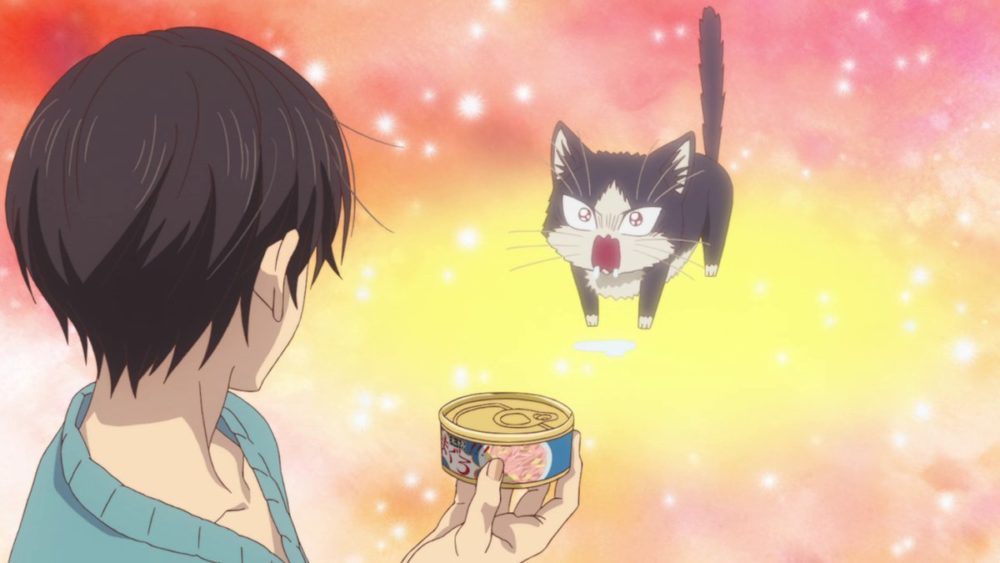 My Roommate is a Cat, Best Anime of 2019