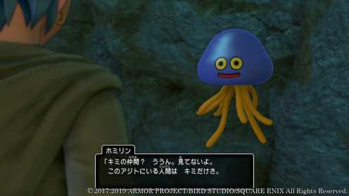 Dragon Quest XI S (11)