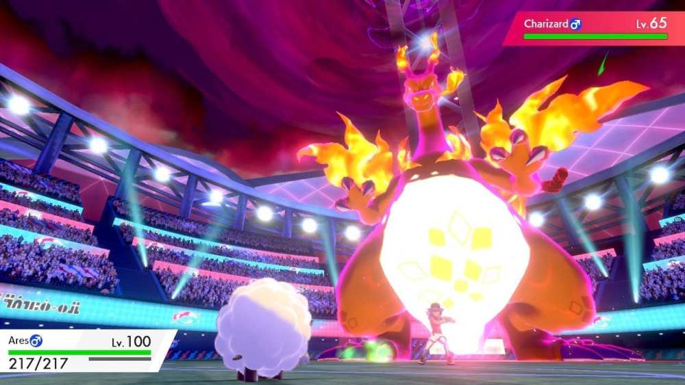 Pokemon sword and shield, wooloo player, charizard, champion cup