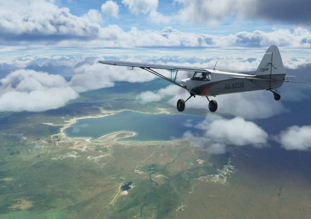 Microsoft Flight Simulator (8)