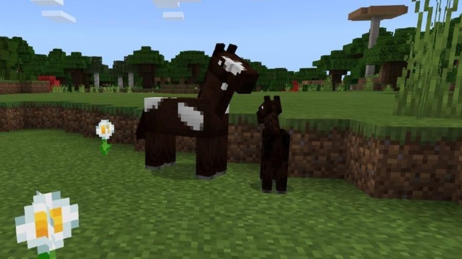 caballos de raza minecraft