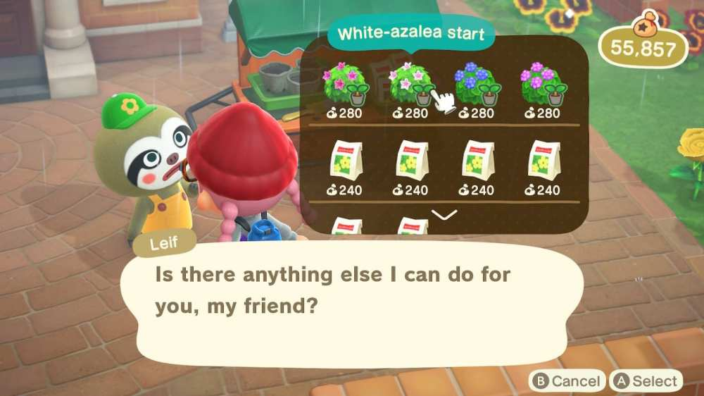 green mums in animal crossing new horizons