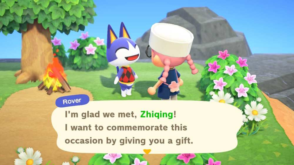 animal crossing new horizons, rover