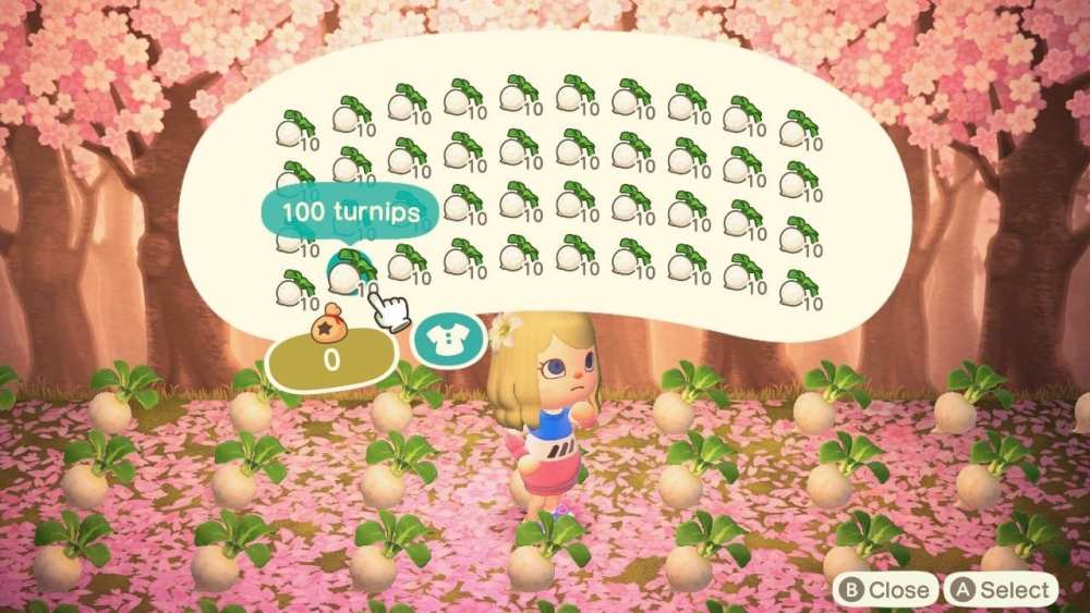 storing turnips in animal crossing new horizons