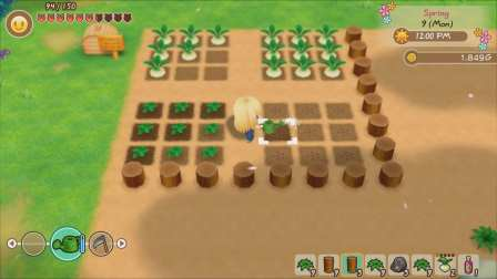 Story of Seasons Friends of Mineral Town (2)