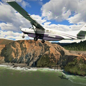 Microsoft Flight Simulator (12)