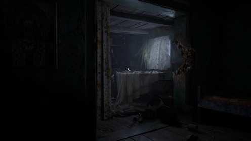 Resident Evil Village (11)