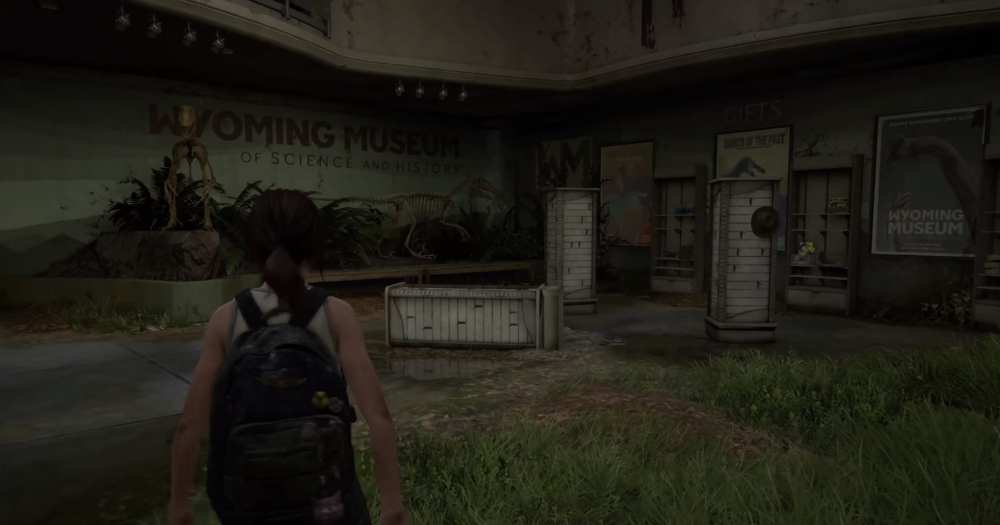 how to place a hat on companion last of us 2