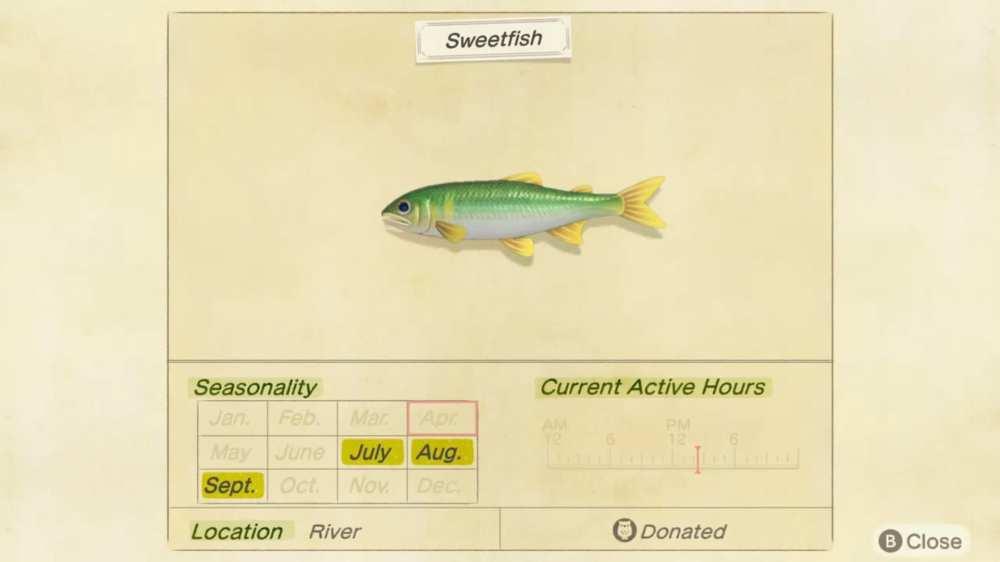 animal crossing new horizons sweetfish