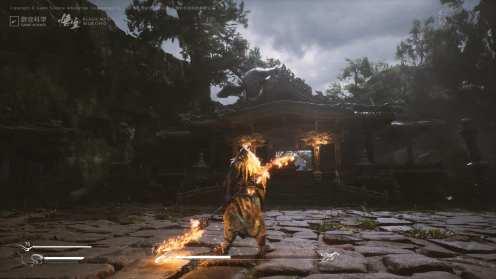 Black Myth Wukong (12)