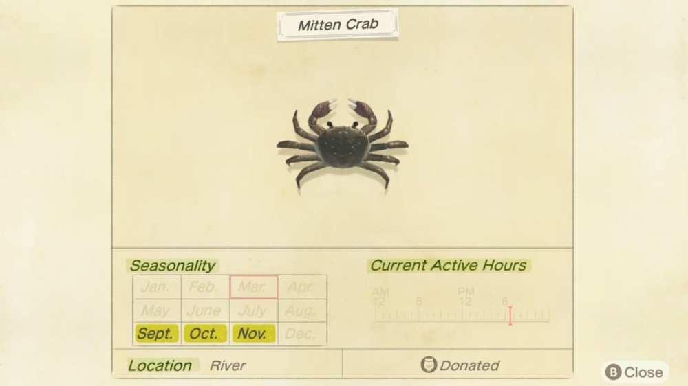 comment attraper le crabe mitaine chez l'animal traversant de nouveaux horizons, prix de vente, emplacement