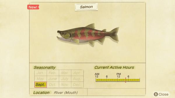 Salmon, animal crossing new horizons