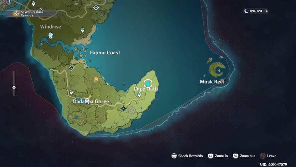 Genshin Impact Musk Reef Map