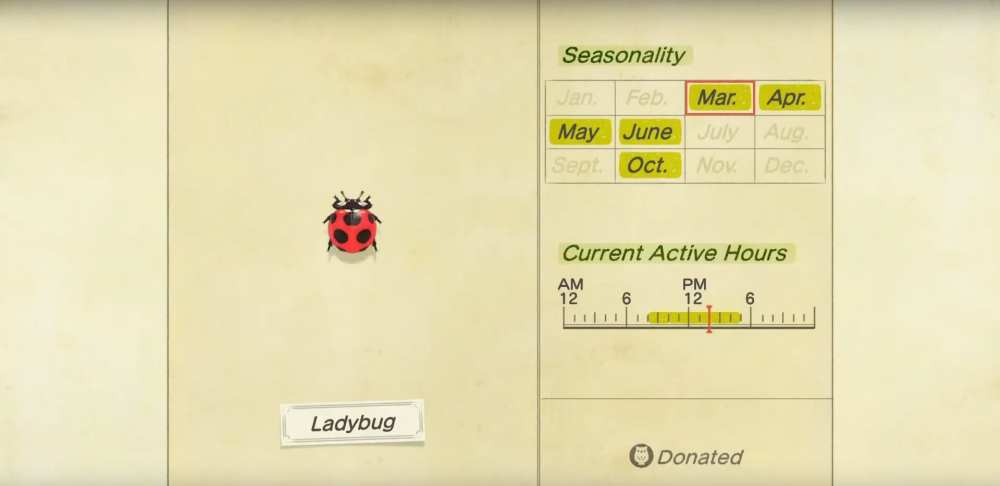 animal crossing new horizons, ladybug