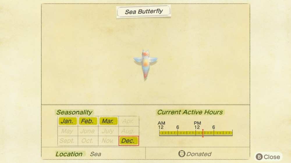 sea butterfly animal crossing new horizons
