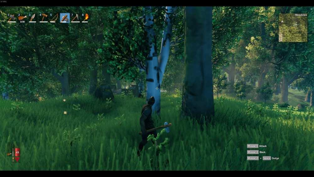 valheim birch trees, fine wood
