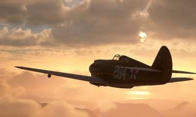 Microsoft Flight Simulator P40