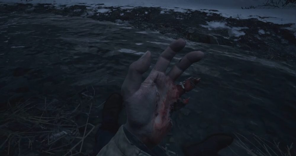 Resident Evil Ethan Winters Hands