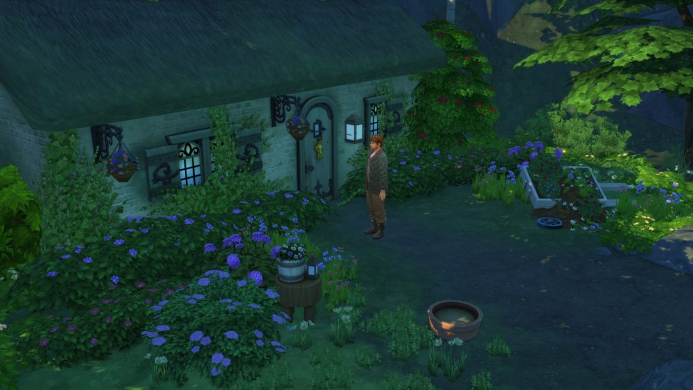 Sims 4 Creature Keeper