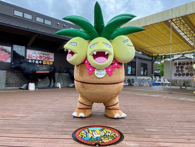 Pokemon Pokelids