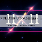 Twin Flames and Numbers_ 11_11