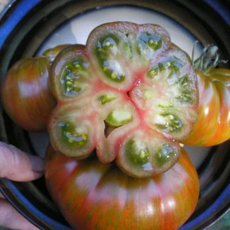 Tomato Green Berkeley Tie-Dye