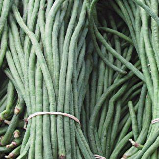 Yardlong bean