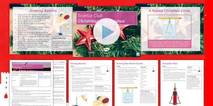 t3-sc-769-science-club-christmas-tree-investigations-activity-pack-english