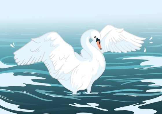 Revise Winter Swans by Owen Sheers: AQA Love and Relationships Poems