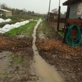 Temp drainage