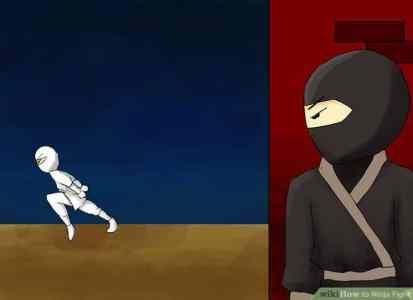 white-black-ninjas