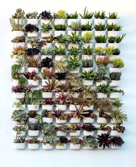 living-wall-white-pots