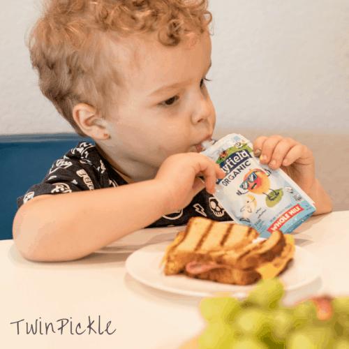 Stonyfield Organic Kids Pouches Whole Milk