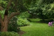 12508030@N06_7203015332_TPN gardens 024