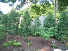 12508030@N06_7203403846_2005.5 client garden (32)