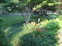 12508030@N06_7203427618_2005.5 client garden (25)