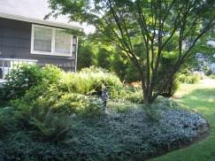 12508030@N06_7203431832_2005.5 client garden (24)