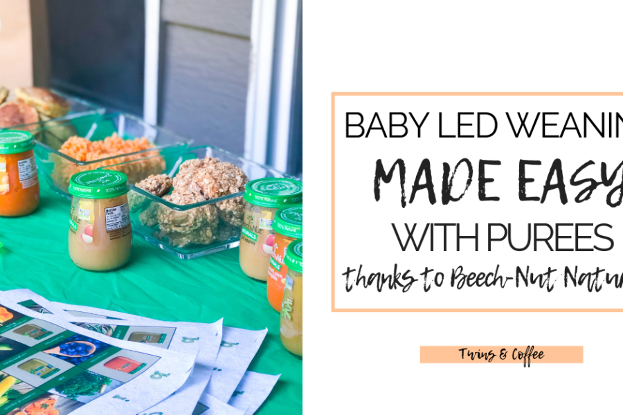 baby led weaning with beech-nut naturals