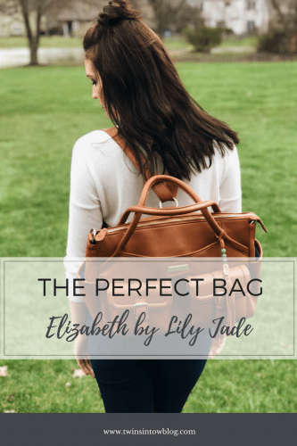 The Perfect Bag: Elizabeth by Lily Jade