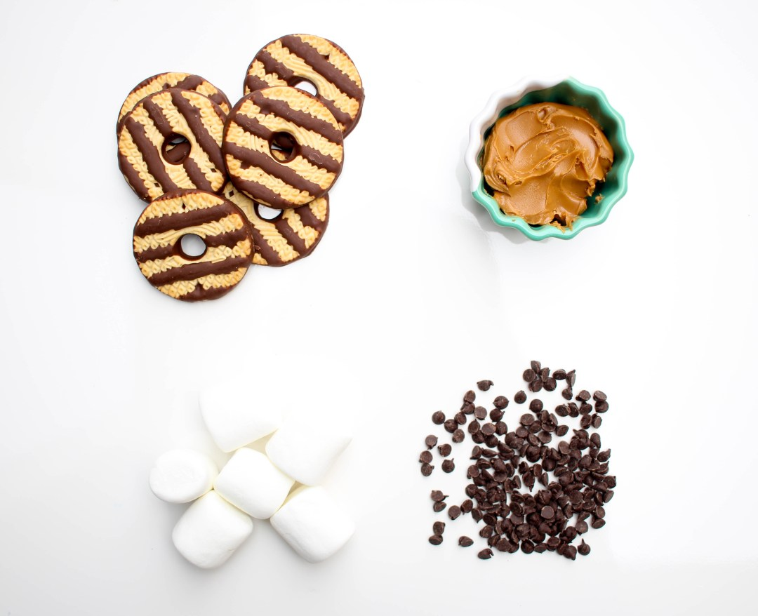 Cookie Lovers S'mores | Twinspiration
