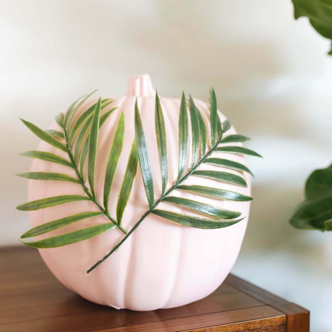 DIY Plants on Pink Pumpkins | Twinspiration